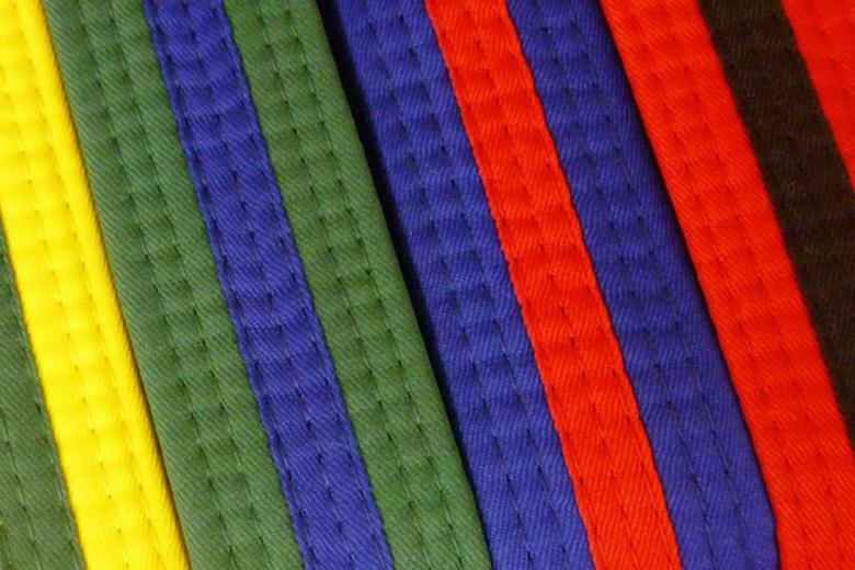 Level 2: Orange Stripe, Orange Belt, Green Belt